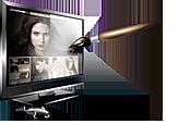 SVA Website Design